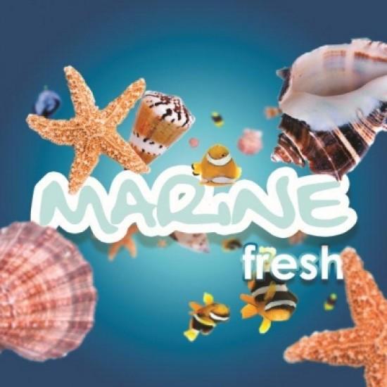 Marine Fresh odorizant Hygiene Vision